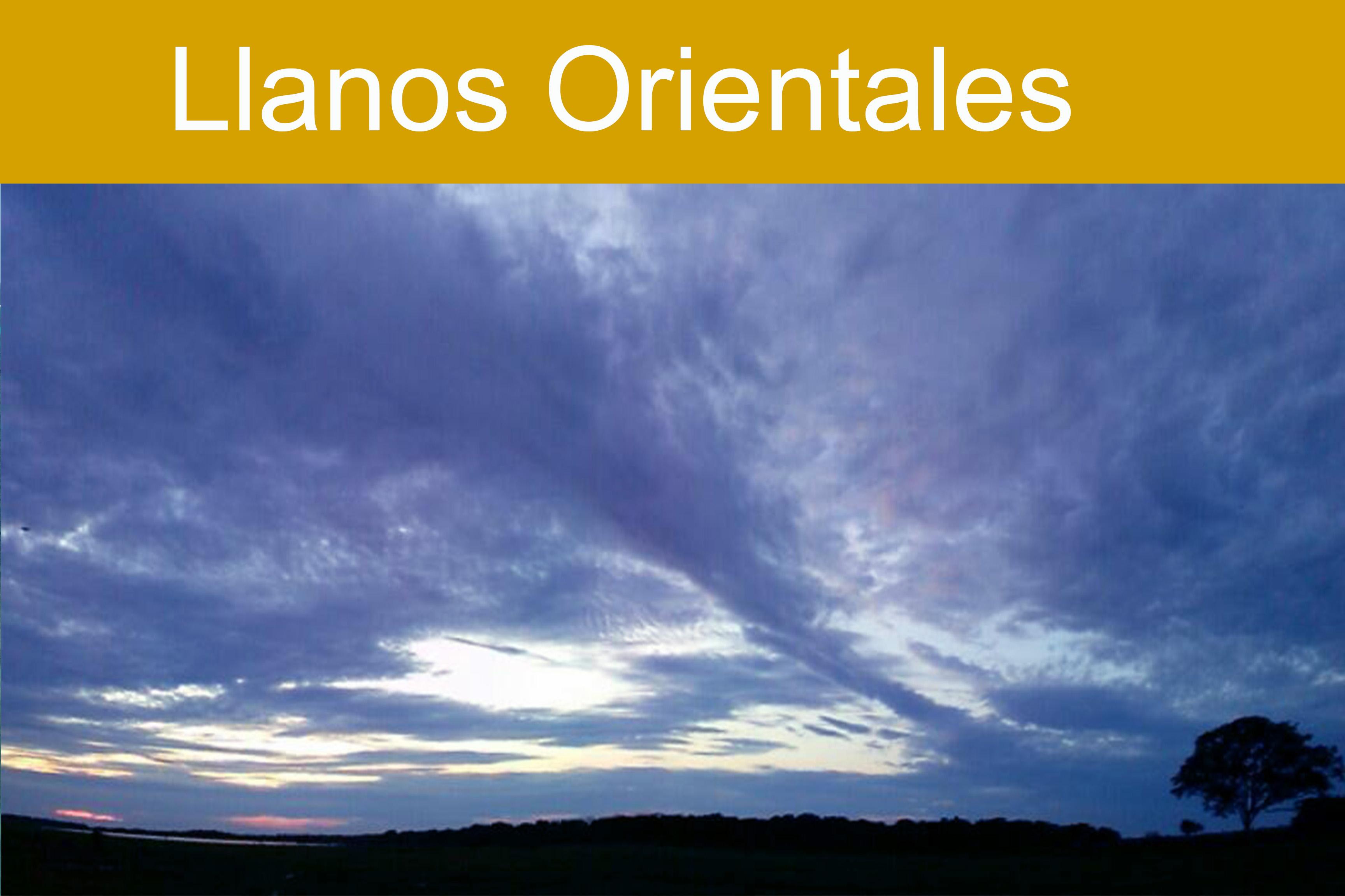 Llanos Orientales